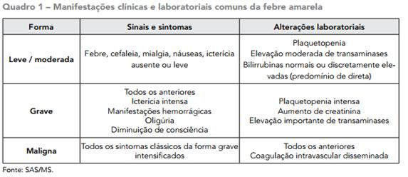 Nota Informativa sobre Febra Amarela